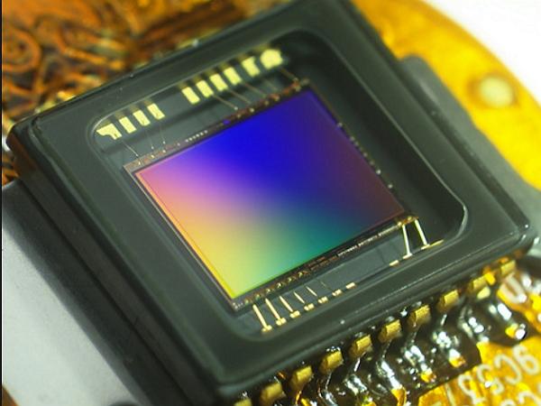 [鳥專欄]大,真的比較好:淺談數位相機的感光元件(上)