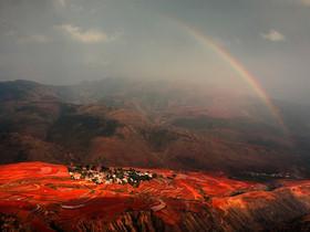 2012 國家地理雜誌攝影大賽,精彩作品賞析