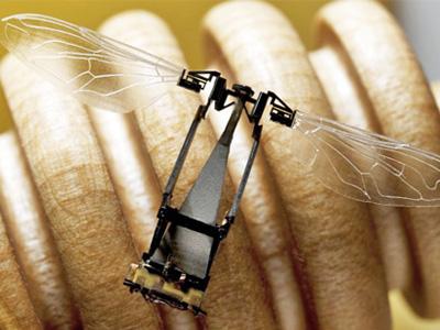 蜜蜂數量大幅下降,科學家研發機械替身完成授粉工作