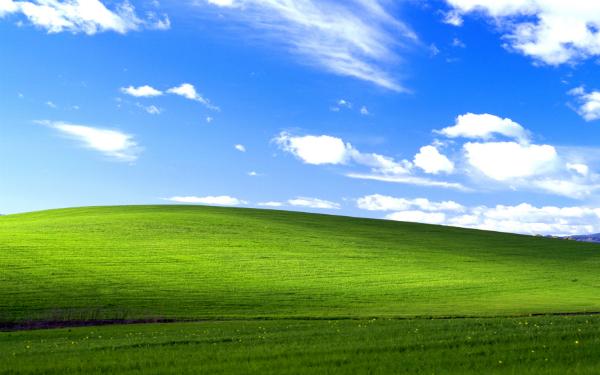 Windows XP 大限將至,這是個全球性問題