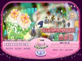 【小花仙】超越永恆的花朵—聖者花