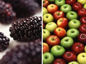 水果大戰之 黑莓 PlayBook vs. 蘋果 iPad