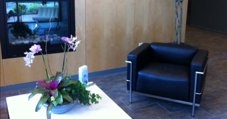 專家告訴你:在辦公室擺放盆栽,能夠達到空氣清淨器的效果嗎?