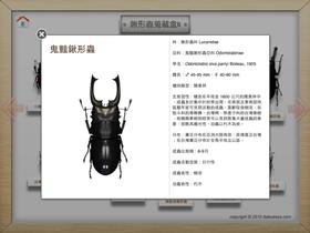 貓頭鷹自然系圖鑑 for iPad ,什麼 蟲、鳥、石 都難不倒