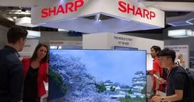 韓國廠商壟斷OLED螢幕,夏普欲構建「日本OLED聯盟」反擊