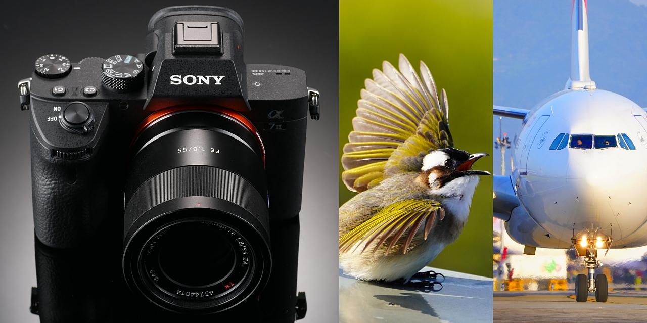 動態追焦連拍實戰:Sony A7 III 評測