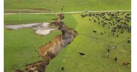 紐西蘭農場主人一夜之間發現農場冒出「天坑」,高度達五層樓高、簡直像是峽谷