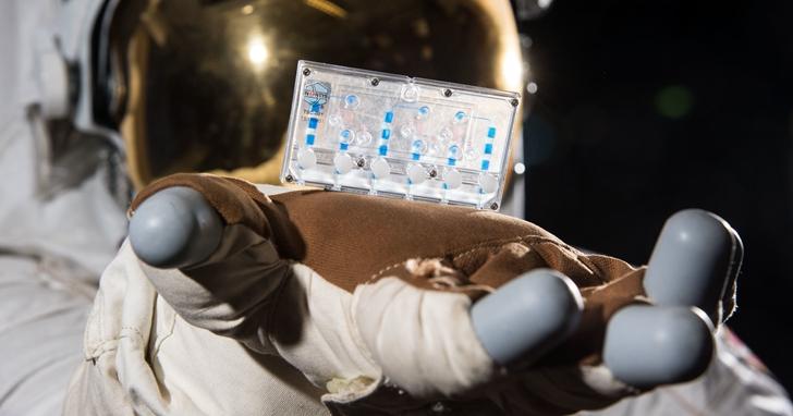 模擬免疫系統、骨質流失或肌肉退化的人體組織晶片,送上太空站做實驗