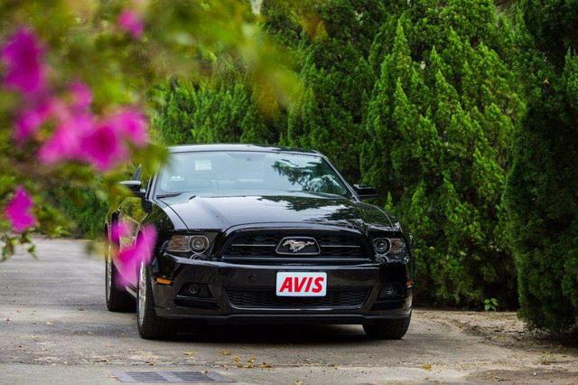 AVIS Taiwan放暑價!全車款均享租車優惠 中信卡紅利點數88點+ $888 野馬跑車快意體驗