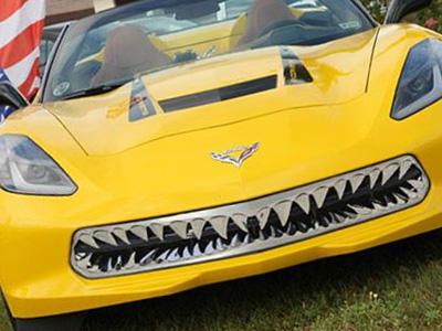 【熱門話題】鯊魚牙套件讓你的跑車更兇猛!