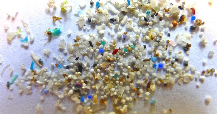 塑膠垃圾氾濫?生物塑膠不使用石油並且降解速度非常快