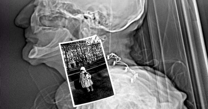 從兩萬七千個切片構建虛擬人類:人體數位化的今天與未來