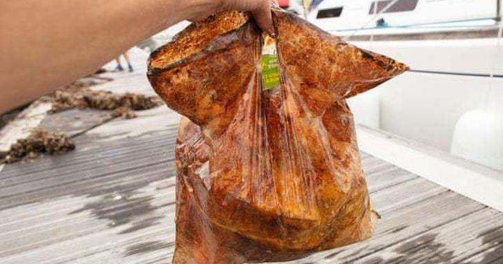 被埋三年還能用的環保可分解塑膠袋,可能是一場誤導消費者的行銷噱頭