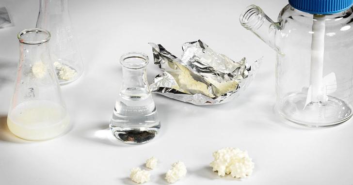 「人造肉」浪潮還沒完,「人造乳製品」已經在發酵