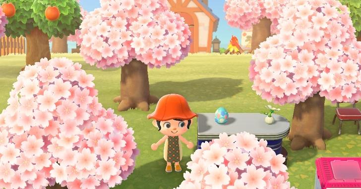 《動物森友會》北半球櫻花滿開啦!「復活節」活動開跑,6 種彩蛋上哪找、櫻花瓣用途大公開