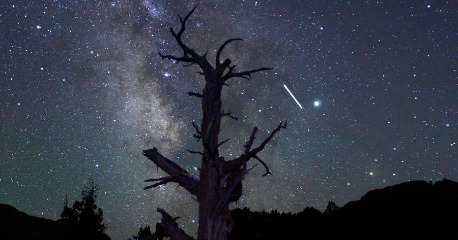 今晚抬頭看看木星衝吧!下週傍晚還能看到 NEOWISE 彗星、土星衝