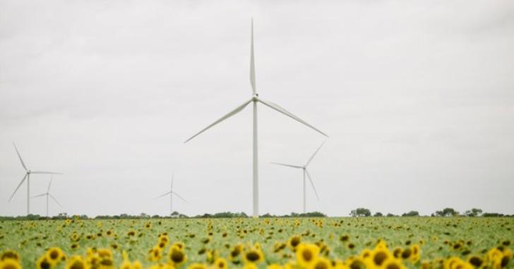 昕諾飛達成全球市場碳中和目標,開啟新階段的永續發展計畫