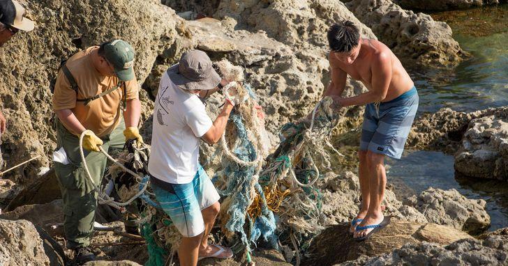 垃圾、防曬乳害慘地球,台灣潛水連15年淨灘清潔