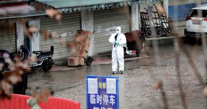 一年多後,WHO專家團終於到達華南海鮮市場