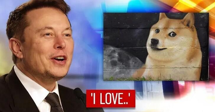 狗狗幣單周暴漲400%,收益遠甩比特幣、以太坊!一個「玩笑幣」500億市值讓分析師笑不出來