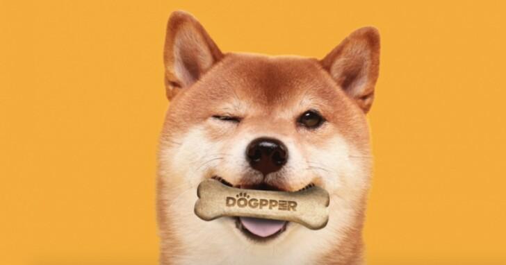 巴西漢堡王宣布接受狗狗幣付款,但僅能用來買狗糧