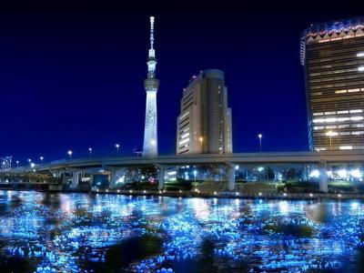 2012 東京螢火蟲嘉年華,10萬顆 LED 打造川與光的感動!