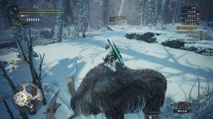 冰原也有豐富的生態系,玩家也能騎乘類似蒙馬象的波波。