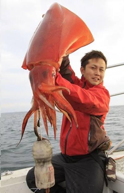 日本漁民�會了用美少女誘捕章�